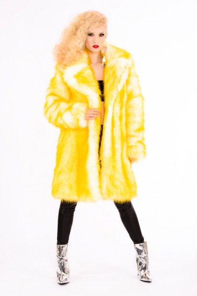 Chapter I Faux Fur
